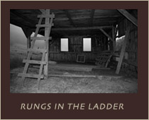 Rungs In The Ladder